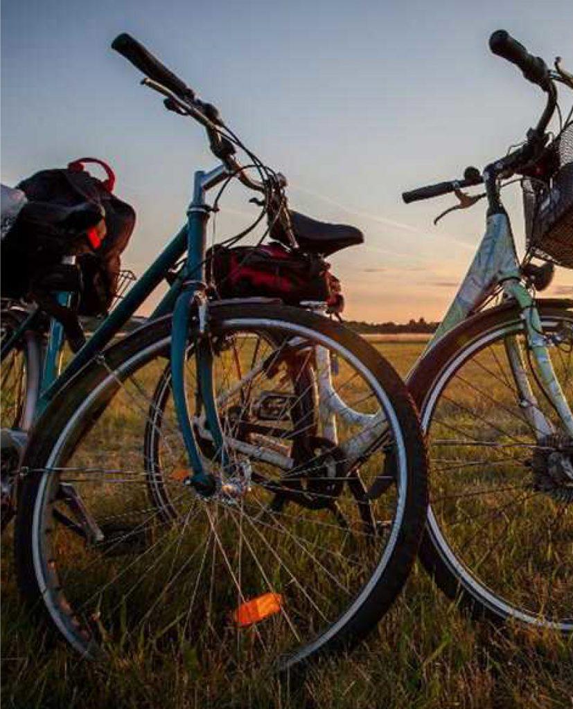 biciclette-bike-tour-tour-in-bici-nel-lazio-lazio-in-e-bike-scopri-il-nostro-territorio-esplora-viaggia-scopri-il-lazio